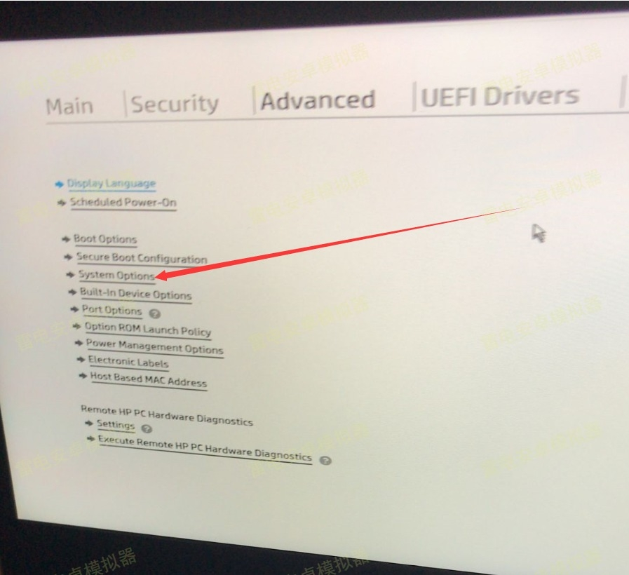 【雷电说明书】惠普hp电脑与惠普hp笔记本开VT的BIOS设置方法
